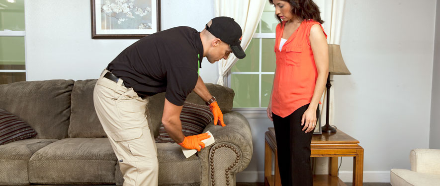 Biscoe, NC carpet upholstery cleaning