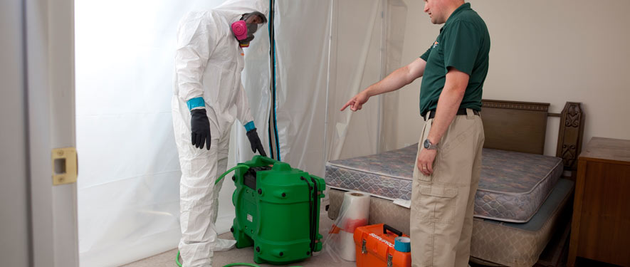 Biscoe, NC mold removal process